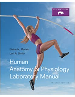 Amazon human anatomy physiology plus modified mastering ap human anatomy physiology laboratory manual fetal pig version 12th edition marieb fandeluxe Images