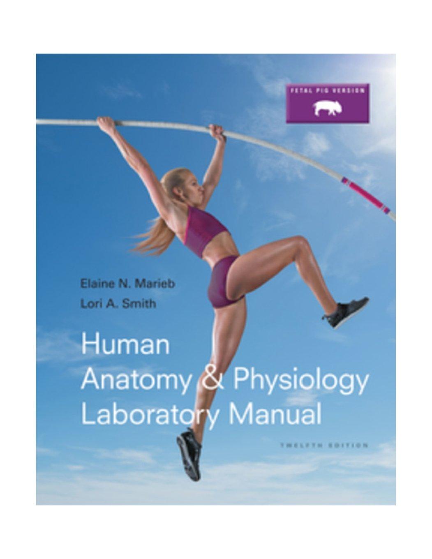 Buy Human Anatomy & Physiology Laboratory Manual, Fetal Pig Version ...