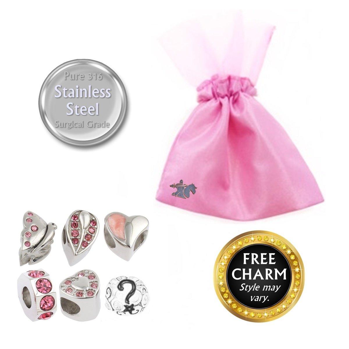 Amazon.com: Pink Rhinestone Charms for European Charm Bracelets ...