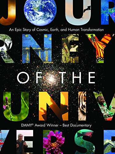 Top journey of the universe