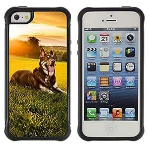 All-Round híbrido Heavy Duty de goma duro caso cubierta protectora Accesorio Generación-II BY RAYDREAMMM - Apple iPhone 5 / 5S - Sunset Meadow Summer Happy Dog