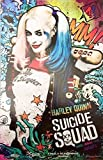SUICIDE SQUAD Original Promo Movie Poster 11