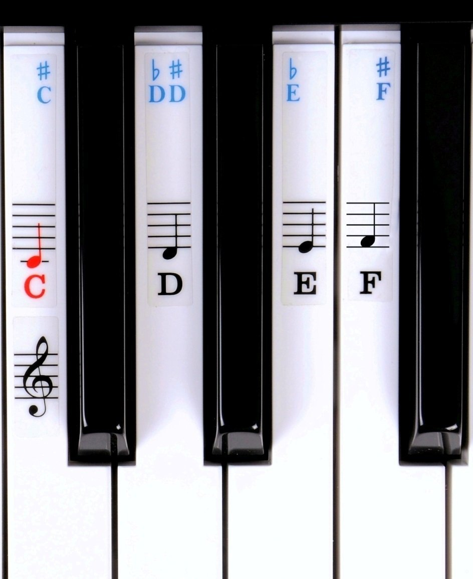 Symphony Pro Piano / Keyboard Stickers For Beginners For 49 / 61/ 76 / 88 Key Keyboards (Piano Stickers) product image