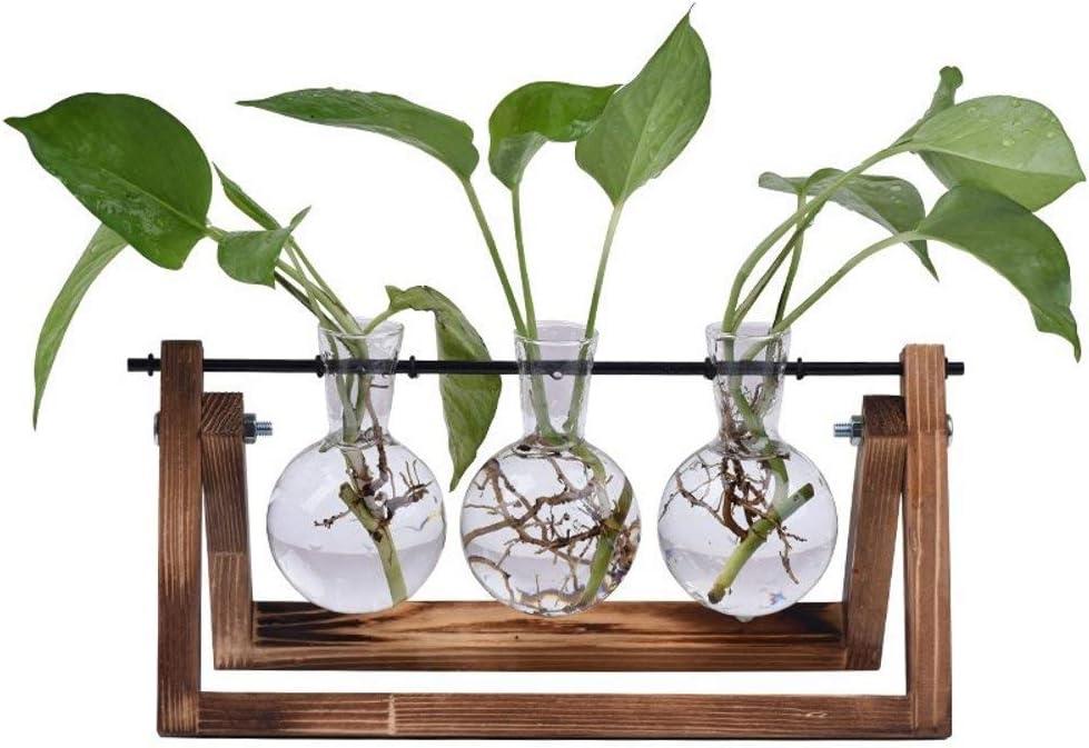 Sunreek - Jarrón de cristal para escritorio, 3 jarrones de cristal con soporte de madera maciza retro para plantas hidropónicas, hogar, jardín, decoración de bodas