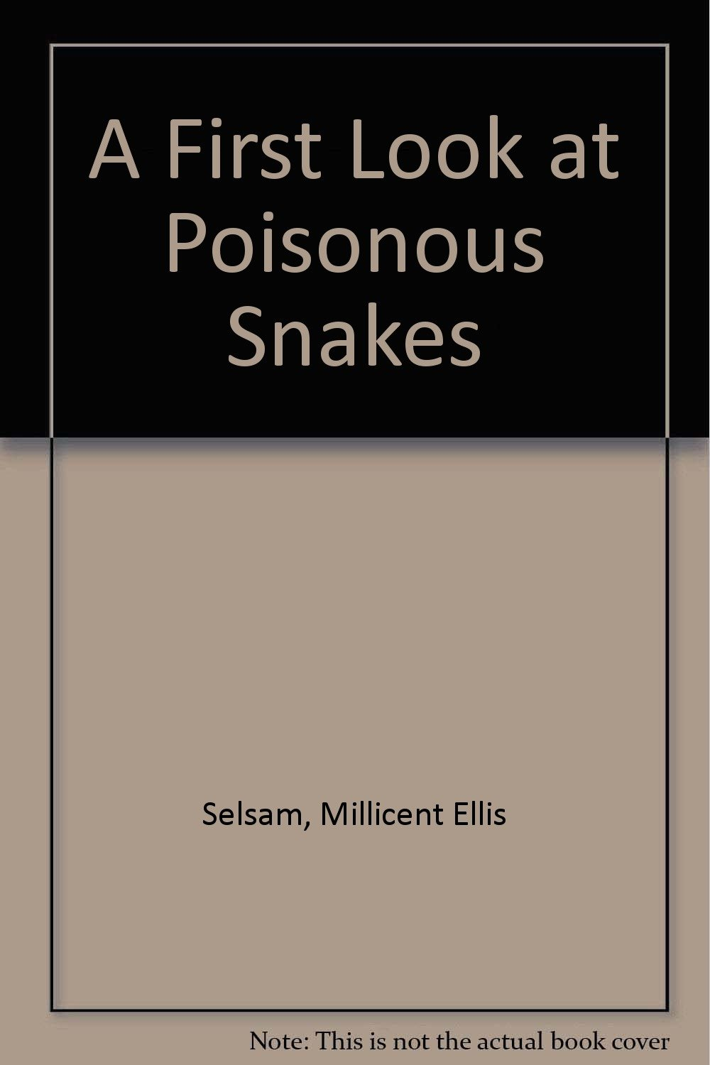 A First Look at Poisonous Snakes (First Look at Series)