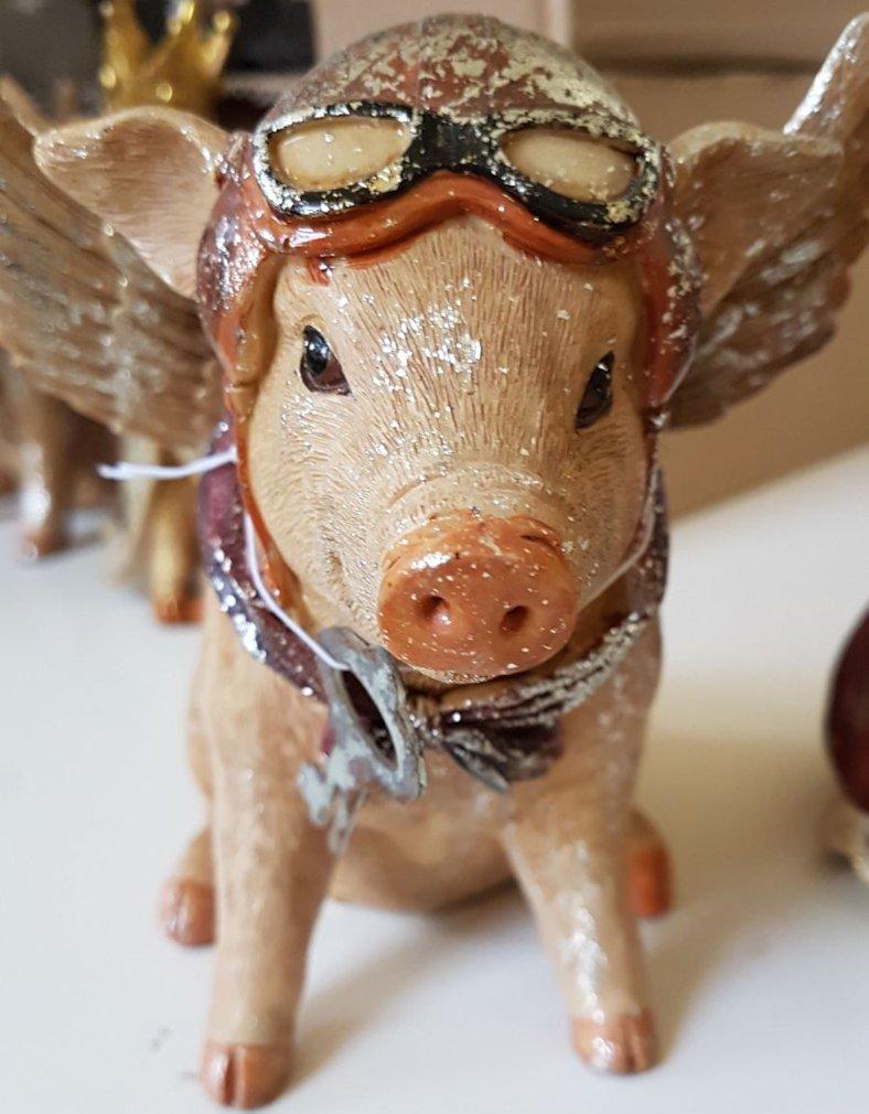 Cerdo con alas y de aviador Hucha Hucha Hucha de estilo vintage