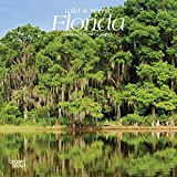Florida, Wild & Scenic 2019 7 x 7 Inch Monthly Mini Wall Calendar, USA United States of America Southeast State Nature (English, French and Spanish Edition)