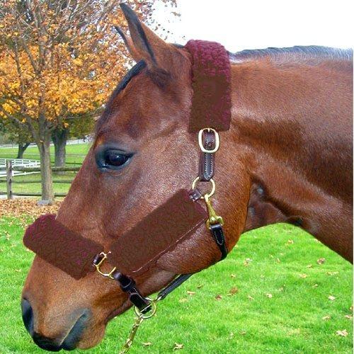 Noseband Horse - 4
