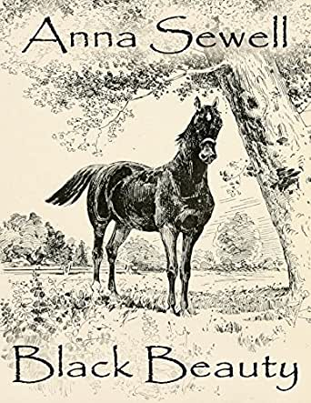 black beauty anna sewell essay Black beauty essayintroduction black beauty is a realistic animal story completed and published by anna sewell in 1877.