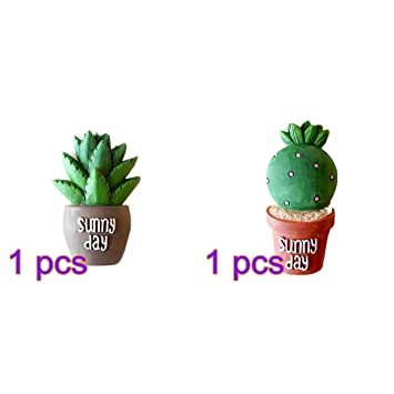 Tinksky 2pcs succulent cactus fridge magnet plant creative resin refridgerator magnets home decoration sticker kitchen