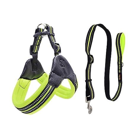 Cable Transpirable para Mascotas, con arnés, Chaleco Reflectante ...