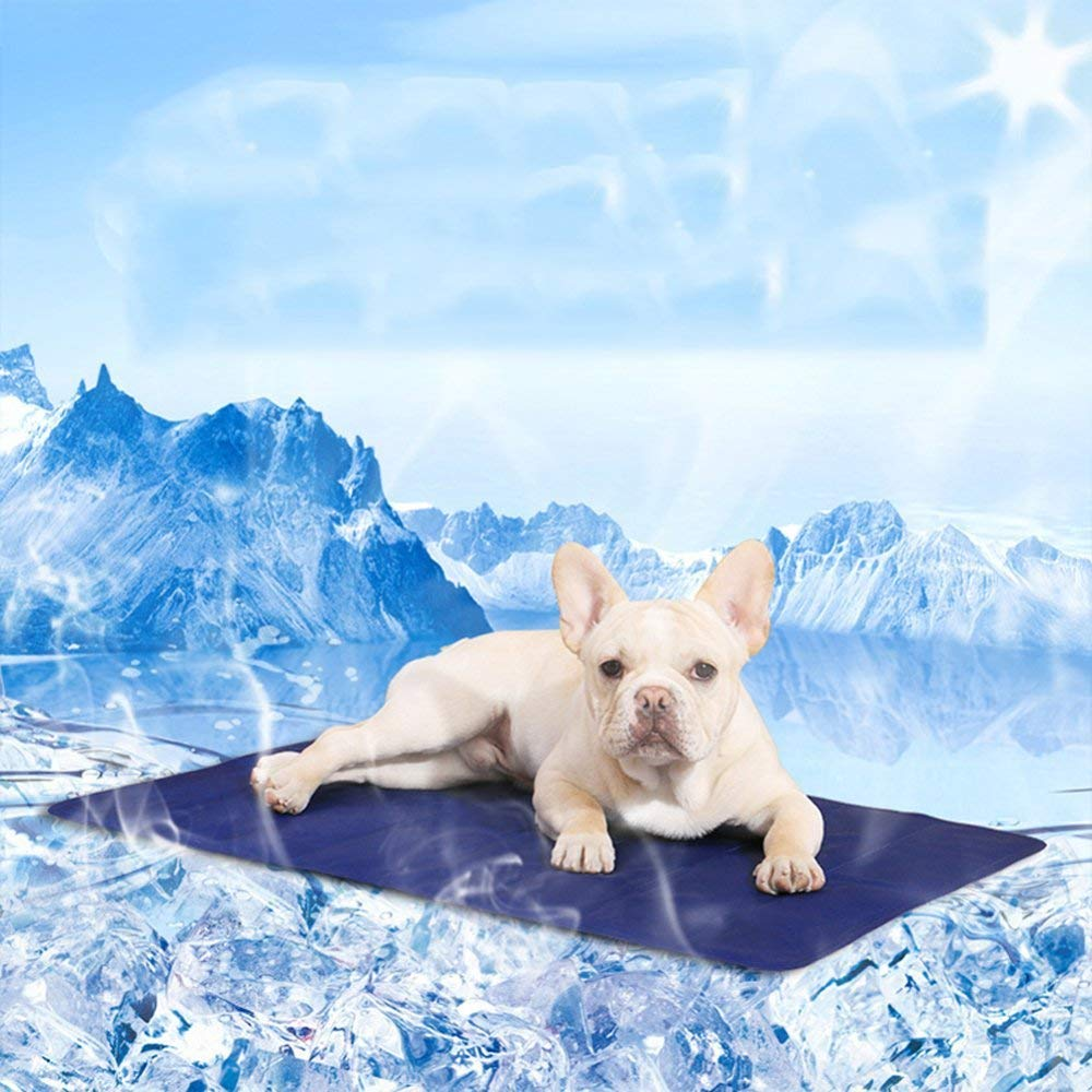 6845cm Pet Bed Pet Dog Cat Cool Mat Self Cooling Gel Mat Pad Bed Mattress Heat Relief Non-Toxic Smart Choice Pet Cooling No More Over Heating Self Gel Pad Mattress Summer (color   68  45cm)