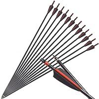 ZSHJG Flechas de Fibra de Vidrio de Tiro con Arco de 31 Pulgadas con Pluma de 3 Pulgadas y difusor de 100 Granos reemplazado para Disparar