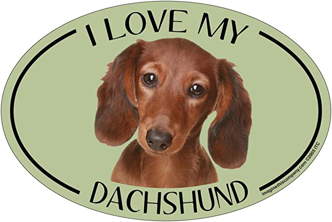 Imagine This Oval Magnet Dog Dad