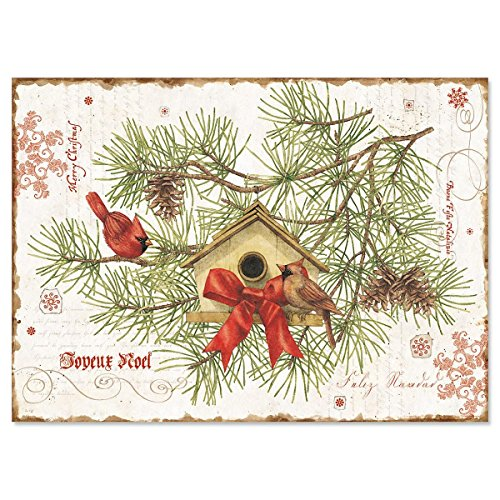 Nature's Praise Religious Christmas Cards- Set of 18 Holiday Greeting Cards (Cards Christmas Catalog Current)