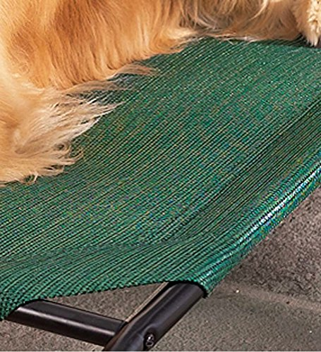 Plow & Hearth Large Weather-Resistant Raised Mesh Pet Bed Replacement Mesh Cover, in Green ()