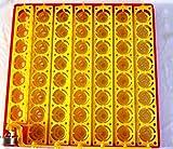 110Volt AC 55 Egg AUTOMATIC TURNER for Incubator