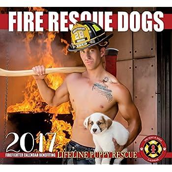 2017 Fire Rescue Dogs Calendar