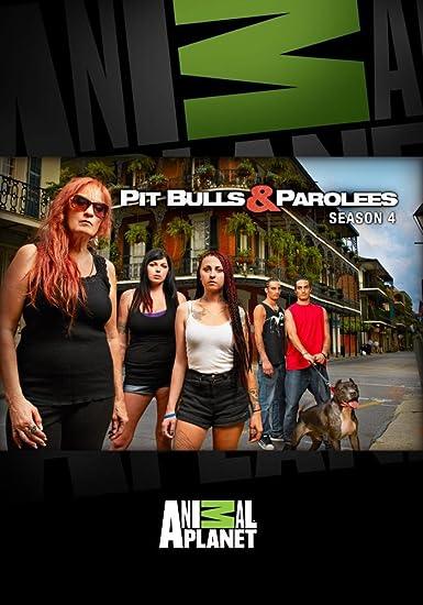 Amazon Com Pit Bulls And Parolees Season 4 Pit Bulls Parolees Season 4 Movies Tv