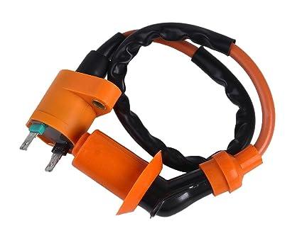 Amazon com: Ignition Coil Eton E Ton E-ton ATV Rxl50 Rxl50m Viper 50