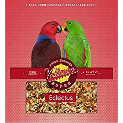Volkman Avian Science Super Eclectus Bird Food 8 lb