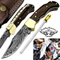 "Rose Wood 6.5'' Handmade Damascus Steel Brass Bloster Back Lock Folding Pocket Knife 100% Prime Quality Sharpening Rod Plus Multi Wood Stainless Steel Pocket Knive ""LIMITED OFFER"""