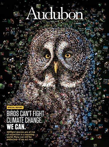 Audubon Magazine (Bird Magazine)
