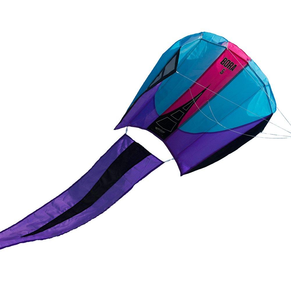 Prism Bora 5 Single-line Parafoil Kite, Frost