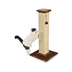 AmazonBasics Cat Scratching Post and Hammock