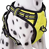 PoyPet No Pull Dog Harness, Reflective Vest Harness with 2 Leash Attachments and Easy Control Handle(Green,XL)