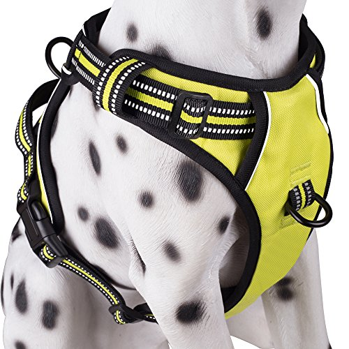 PoyPet No Pull Dog Harness, Reflective Vest Harness with 2 Leash Attachments and Easy Control Handle(Green,L)