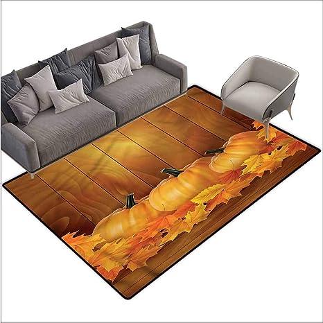 Surprising Amazon Com Floor Mats Modern Kitchen Rug Harvest Squash Squirreltailoven Fun Painted Chair Ideas Images Squirreltailovenorg