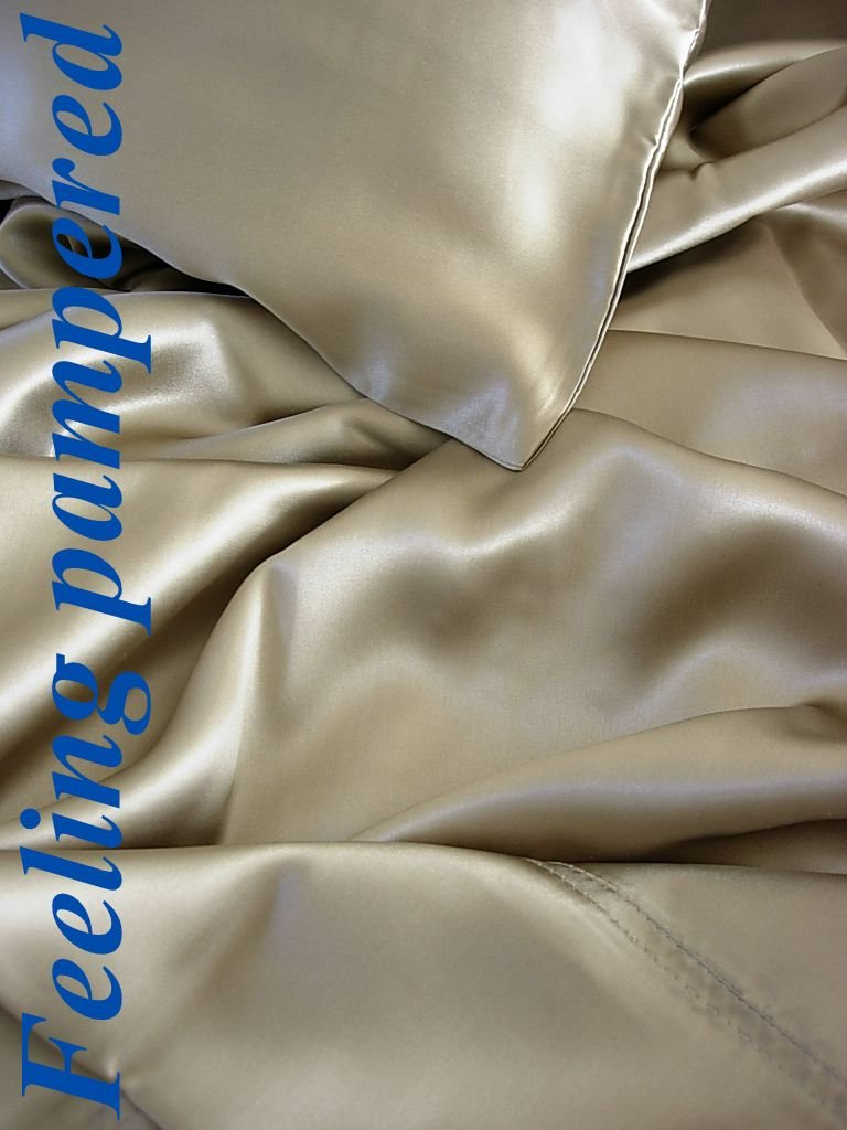 Feeling Pampered 100% Mulberry Silk Charmeuse Queen Flat Sheet 90x110 Taupe Half of Retail