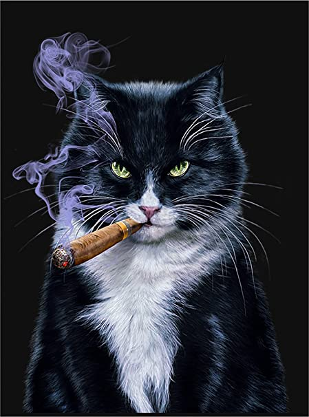 Fox Republic Art Poster Evil Looking Cat Smoking Cigar Black Glossy Paper White Framed A3 Amazon Co Uk Kitchen Home
