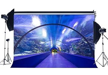 gladbuy 9 x 6ft disfraz de telón de fondo mundo submarino acuario corales brillante luces arco ...