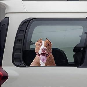 DONL9BAUER 3D Decal, Dog Sticker Pitt Bull Puppy Car Stickers Vinyl Auto Scratch Cover Car Decal for Home Truck Computer Laptop Travel Case Tumbler Door Window Bumper Decor