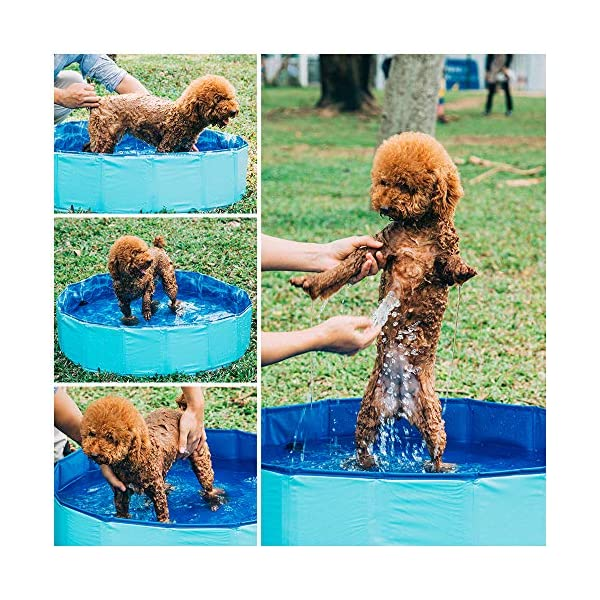 GoPetee Foldable Dog Swimming Pool Puppy Cats Paddling Pool Bathing Tub for Pet Children Kid (Ocean Wave, 80 * 20CM,) 2