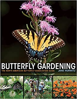 Image result for butterfly gardening jane hurwitz