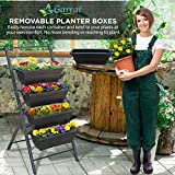 Garraí Vertical Garden Planter - 3 3/4 feet high 5 Tiered Raised Garden Box - Indoor or Outdoor planters for Flowers, Herbs, Vegetables or Seeds