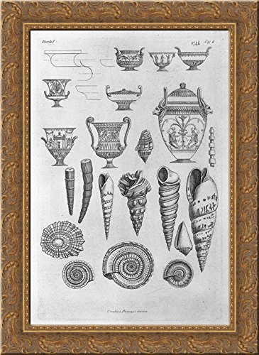 Other shells, and Greek vases etched outline 20x24 Gold Ornate Wood Framed Canvas Art by Piranesi, Giovanni Battista