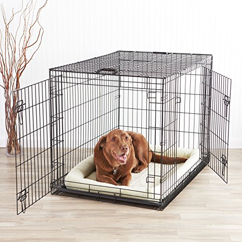 AmazonBasics-Double-Door-Folding-Metal-Dog-Crate-Large-42x28x30-Inches
