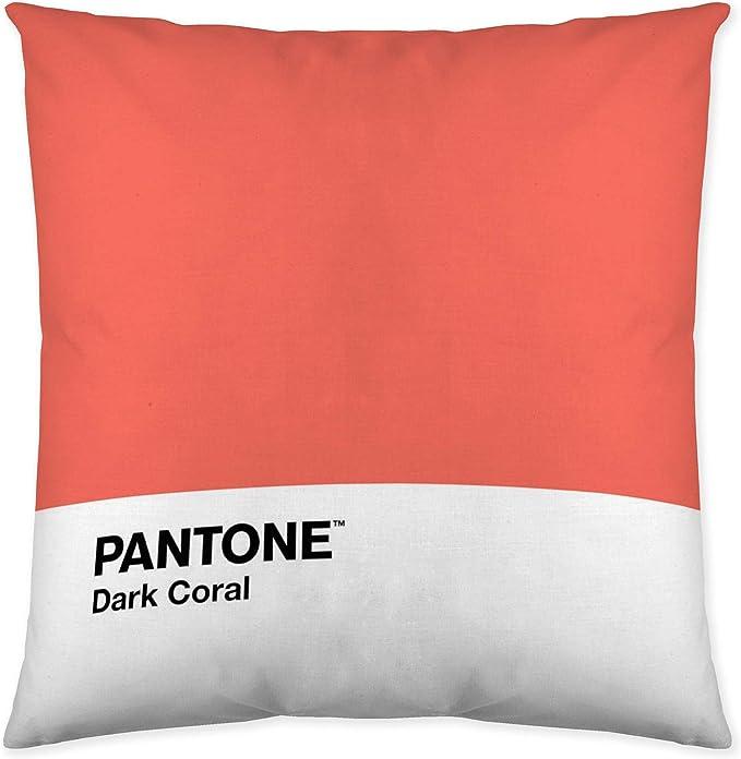 Pantone Funda de cojín Reversible Narrow C2 50x50 cm: Amazon.es: Hogar