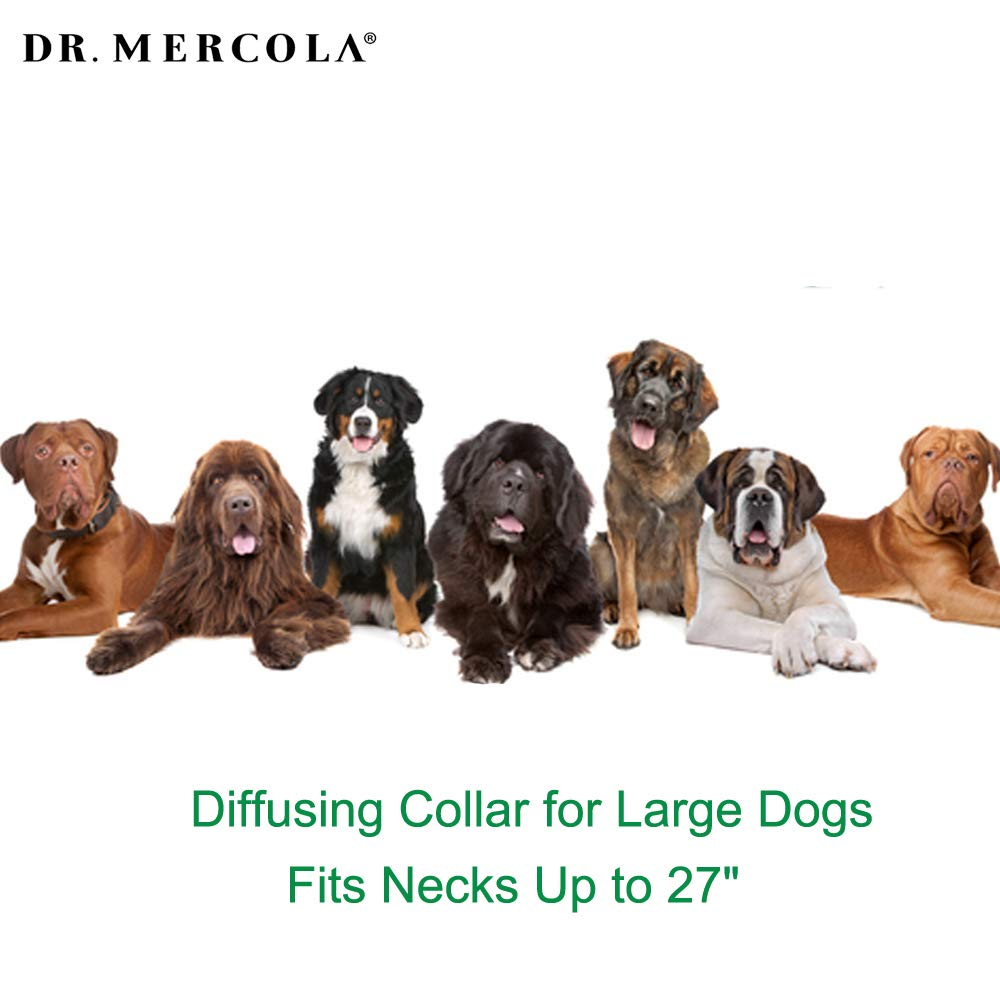 Dr. Mercola Herbal Repellent Collar For Large Dogs with Natural Active Ingredients, Long-lasting Flea Prevention - Odorless, Safe and Waterproof Flea Collars Effective Up To 4 Months, Necks up to 27'' by Dr. Mercola (Image #5)