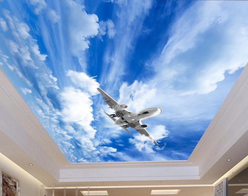 Sproud Europaea 3D Pegatinas Techo Sky Aviones Techo Personalizado ...