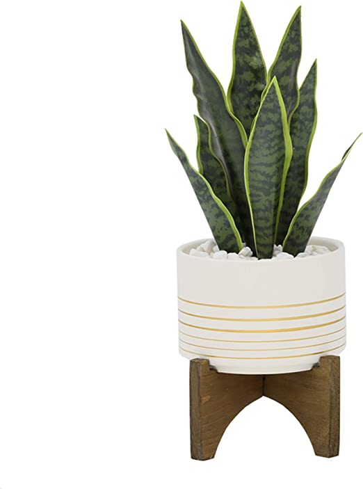 Artificial Plants Beautiful Feaux Plant For Home Decor Kurrajong Farmhouse 8 X 4 5 Artificial Plant In Concrete Cement Pot Fake Plant Decor Artificial Succulent Plants Potted Fake Indoor Plants Talkingbread Co Il