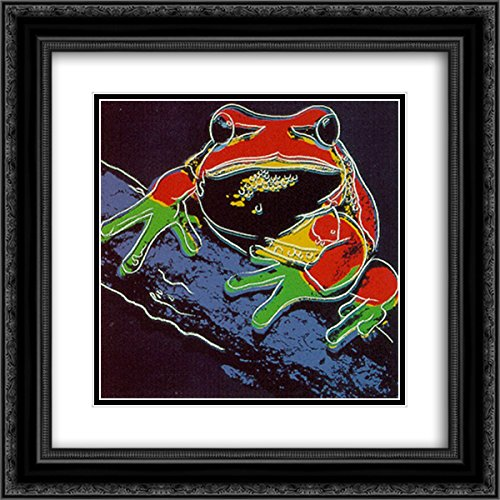 Tree Frog Species (Andy Warhol 2x Matted 20x20 Black Ornate Framed Art Print 'Pine Barren Tree Frog II.294 (From Endangered Species Suite)')