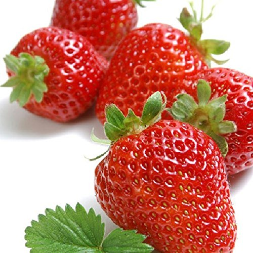 30pcs red fruit strawberry seeds fruit strawberries seeds flower seed garden