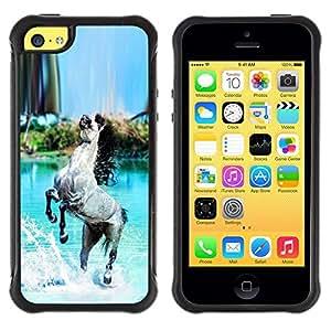 Suave TPU Caso Carcasa de Caucho Funda para Apple Iphone 5C / Horse Grey Black Paradise Blue Sea Island / STRONG