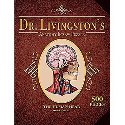 Genius Games Dr. Livingston's Human Anatomy Jigsaw Puzzles - The Human Head: Toys & Games