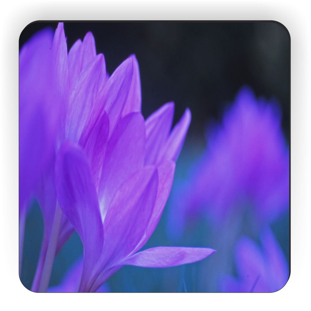 Lavender Rikki Knight Blooming in A Garden Design Square Fridge Magnet